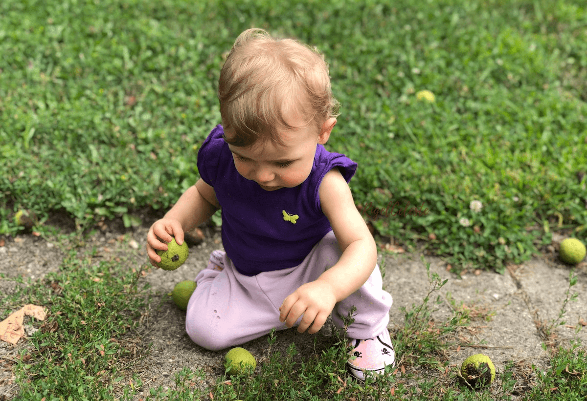 toddler on a nature walk